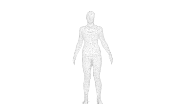 Black Wireframe (Whole Body)