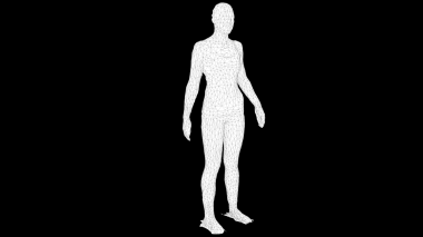 Black Wireframe (Quarter View/Whole Body)